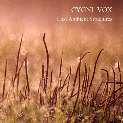 альбом «Lost Ambient Structures» | проект «Cygni Vox» | NR-2307